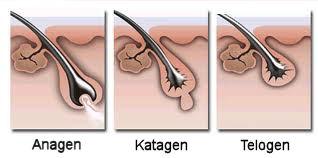depilacja szczecin